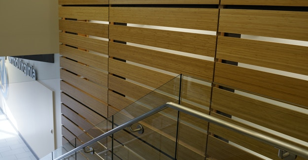 Featured Image for:HCAVa Sports Medicine - Bamboo Plywood Feature Wall Case Study