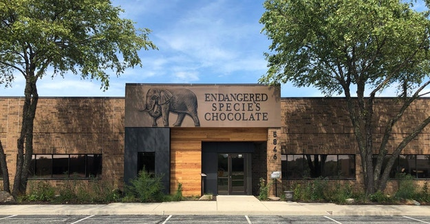 Featured Image for:Endangered Species Chocolate Office - Richlite Rainscreen - Indiana Case Study